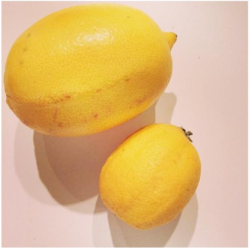 Linas-Matkasse-citron