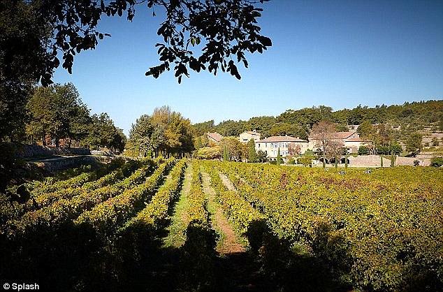 brangelina-vin