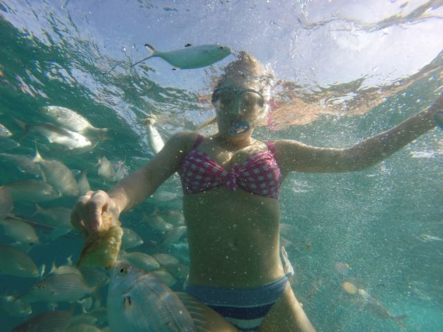 catamaran-cruise-fuerteventura
